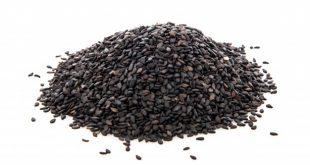Sesame Seeds in Urdu