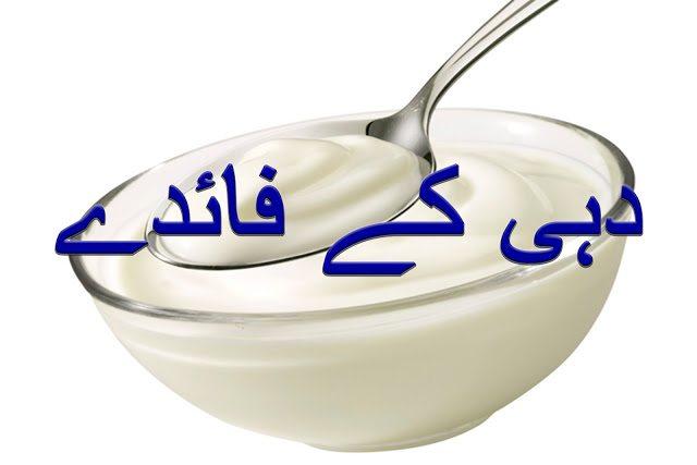 Yogurt Benefits in Urdu   Dahi ke Faide