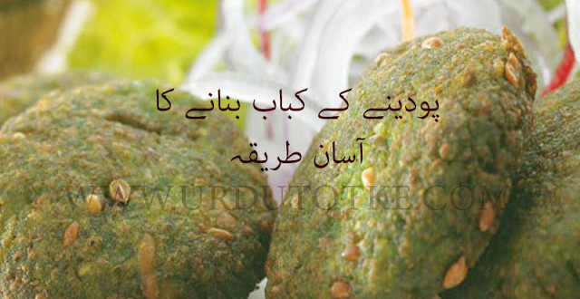 Mint kabab recipe in hindi - Mint kebab recipe in hindi