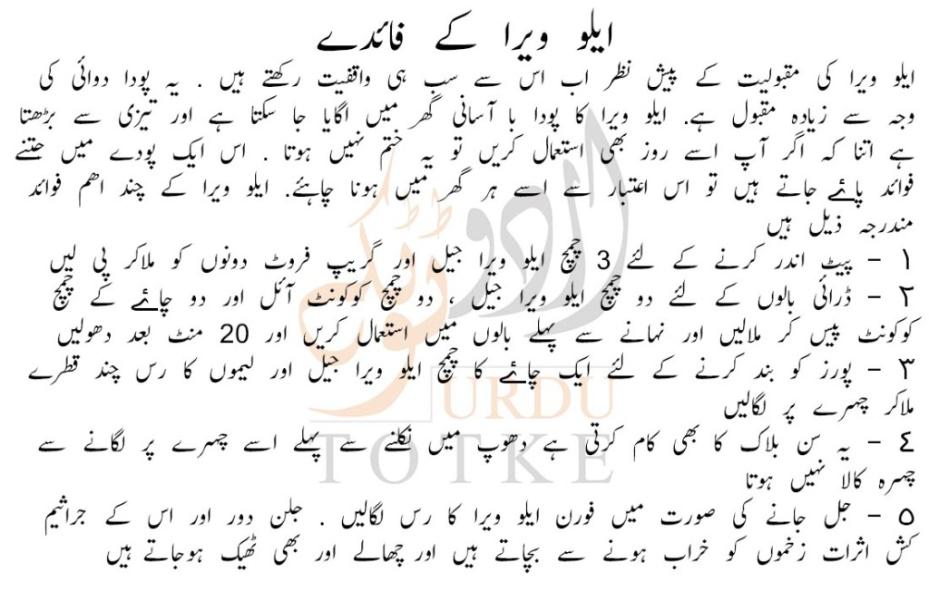 uses of aloe vera in urdu
